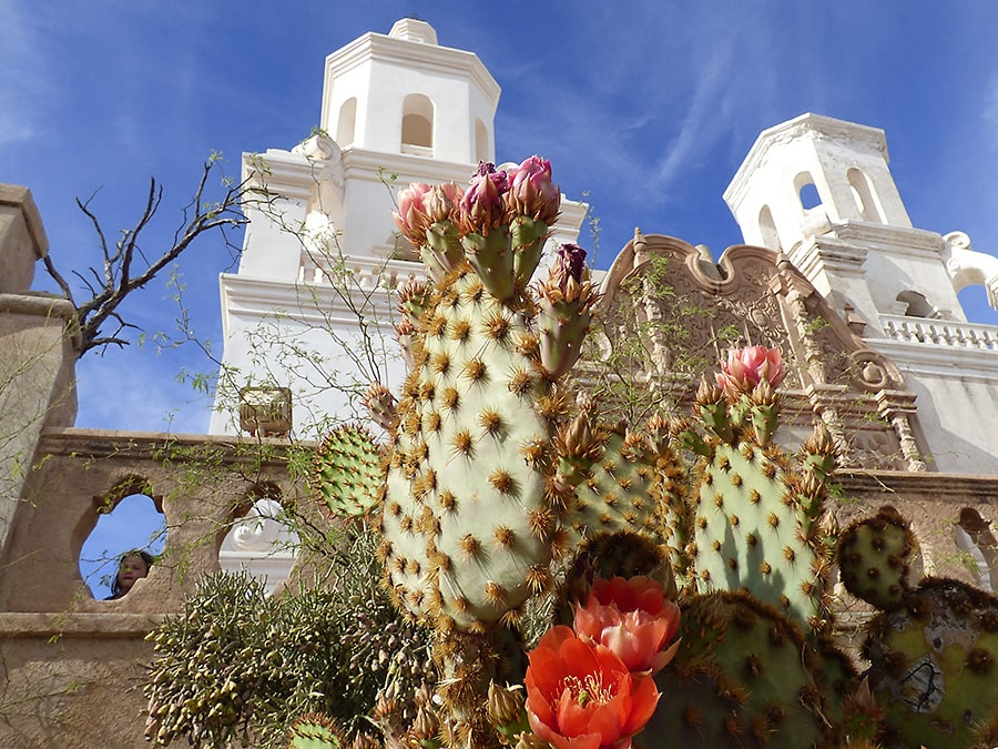 Historic Mission San Xavier