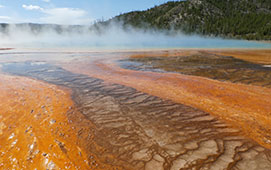 Yellowstone Thermal Feature