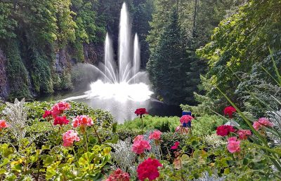 Beautiful landscaping with fountain