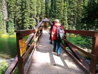 Hike in Manning Provincial Park