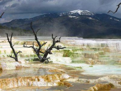 Yellowtsone's Mammoth Hotsprings