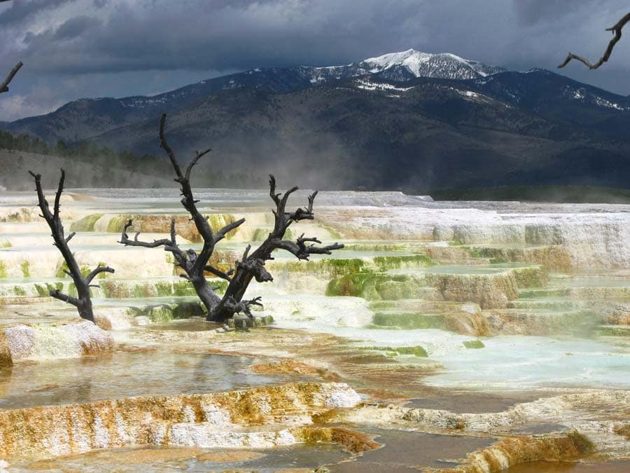 Yellowtsone's Mammoth Hotsprings