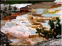 Mammoth Hot Springs on Wild West Yellowstone Tour