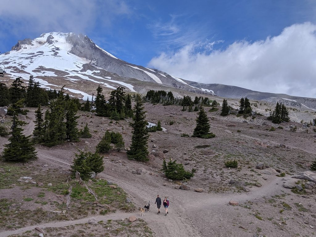 Mount Hood from the summer chairlift