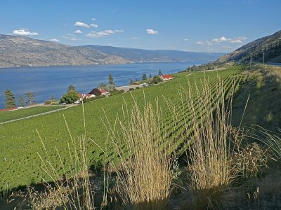 Wineries in Okanagan